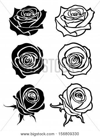 Close up rose vector tattoo, logos, floral silhouettes. Set of flower rose monochrome, roses with petal illustration