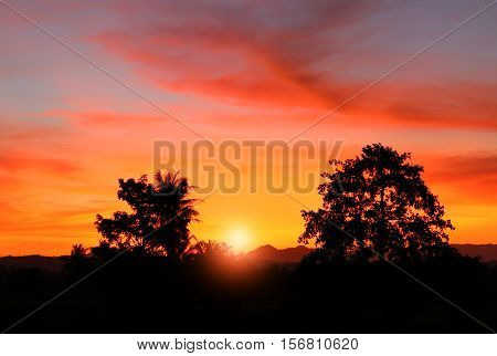 sunset on sky colorful cloud beautiful and sun light with silhouette motion tree in woodland and evening in nature