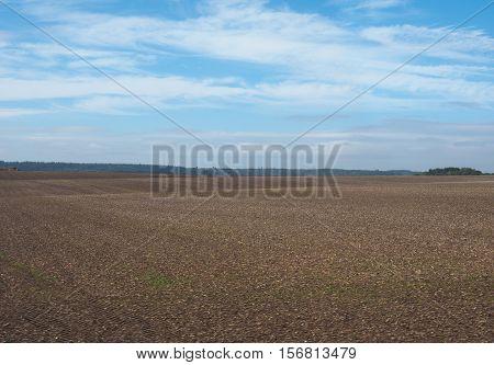 English country panorama around Salisbury in England UK