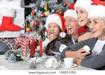 Portrait of happy grandparents with their grandchildren in Santa hats celebrating Christmas at home looking at distance