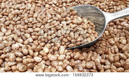 Heap of pinto beans and an aluminum transfer scoop for cereals on a market table.