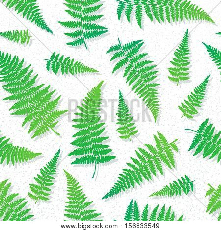 Seamless pattern with green hand drawn fern leaves on light background . Vector illustration