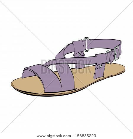 Mens sandals isolated on white background, summer shoes, color vector illustration isolated