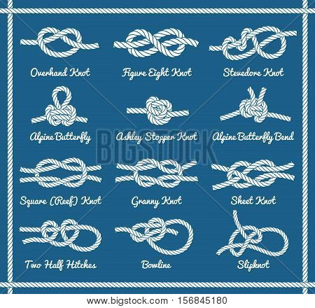 Set of rope knots, hitches, bows, bends. Decorative vector design.