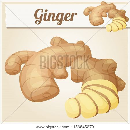 Ginger root illustration. Cartoon vector icon. Series of food and ingredients for cooking.