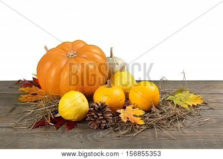 Assorted pumpkins and squashes on rustic wooden boards with an shinning autumn backdrop