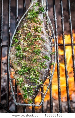 Grilled Fish On Hot The Rack With Fire