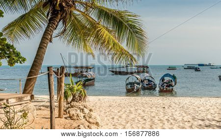 ZANZIBAR, TANZANIYA- JULY 12: touristic boats anchored near sandy beach with palm and horizon on the background on July 12, 2016 in Zanzibar