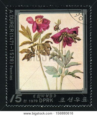 NORTH KOREA - CIRCA 1979: A post stamp printed in North Korea shows flower circa 1979