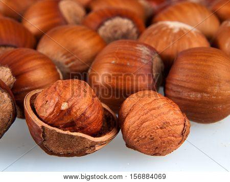 Heap of ripe hazelnuts, corylus maxima, oregon filbertson seeds