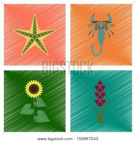 assembly flat shading style illustration of starfish Scorpio sunflower gladiolus