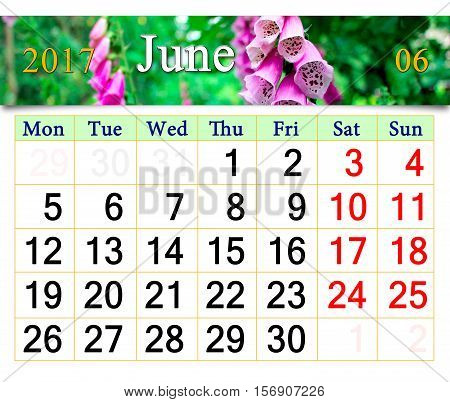 calendar for May June with flowers of flowers of lilac bluebells