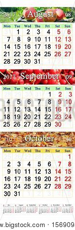 office calendar for three months June July and August 2017 with images of apples schisandra and autumnal leaves. Calendars for mass printing and using as wall calendars in office life
