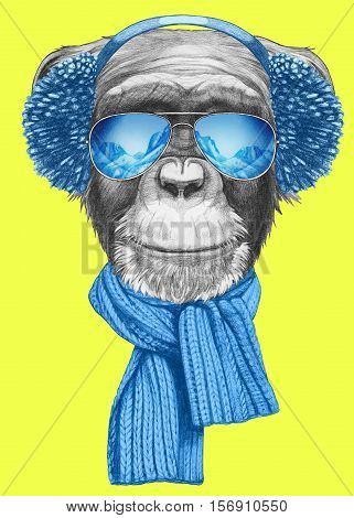 Portrait of Monkey with scarf, earmuffs and sunglasses. Hand drawn illustration.
