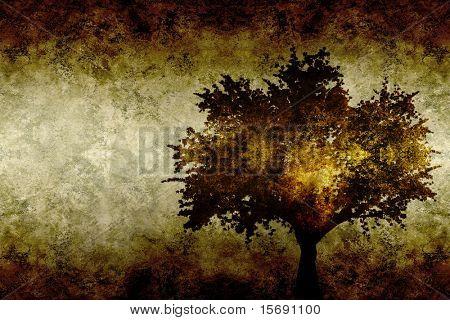 Grungy oak tree background