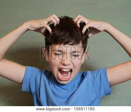 preteen handsome boy scratch his head isolated on blue Flea invasion