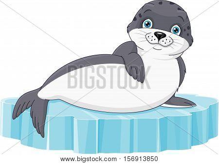 Cute seal lies on ice floe, EPS 8