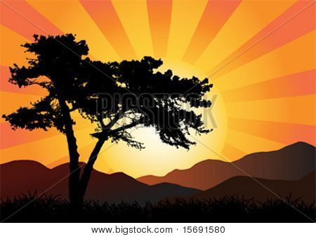 Vector illustration of a tree and mountains at sunset