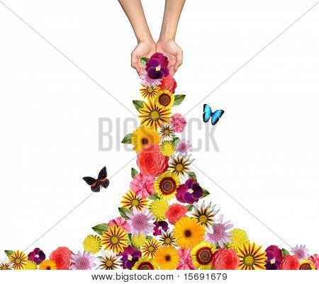 Hands sprinkling flowers everywhere
