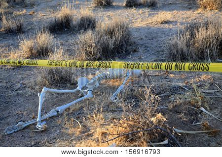 Crime Scene. Skeleton partially buried in dirt in a desert. Forensic Crime Scene. Murder Scene. CSI Investigation.