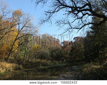 Late Fall at Paradise Springs in southern unit of Kettle Moraine Forest, Wisconsin