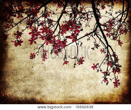 Grungy image of cherry blossoms