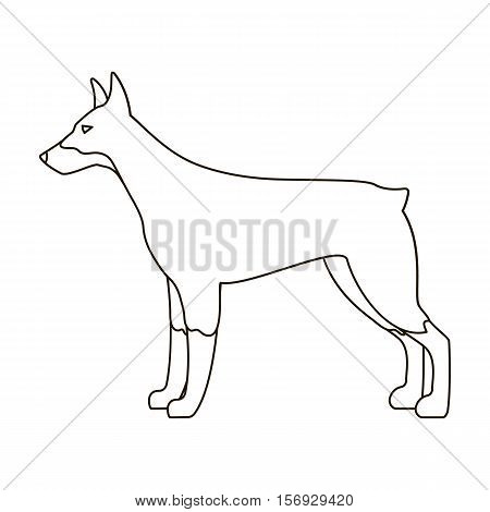 Doberman icon in outline style isolated on white background. Dog breeds symbol vector illustration.