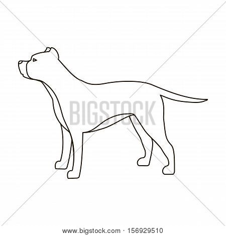 Pitbull icon in outline style isolated on white background. Dog breeds symbol vector illustration.