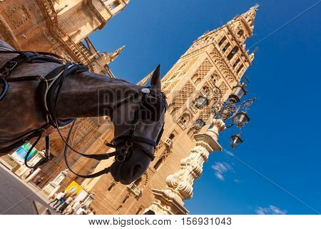 Horse carriage waiting for tourists near Giralda, bell tower of the Seville Cathedral, in the sunny summer day, Seville, Andalusia, Spain.
