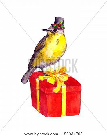 Cute bird in top hat with christmas mistletoe on red present box. Watercolor