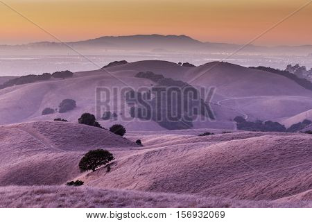 Sunset of California Golden Hills. California Landscape of Oak trees scattered among the beautiful golden hills of the East Bay in Alameda County.