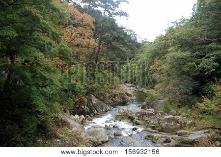 Mitake Shosenkyo gorges and moutain stream with red autumn leaves in Koufu Yamanashi Japan