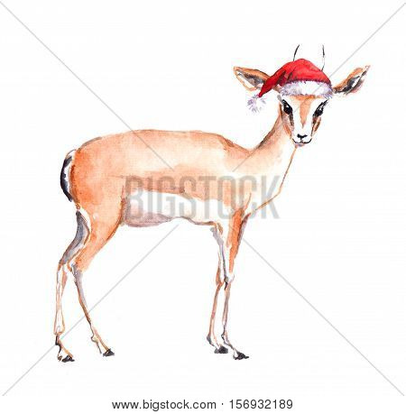 Cute xmas antelope in red santa's hat. Watercolor christmas animal