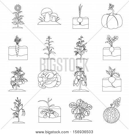 Plant set icons in outline style. Big collection of plant vector symbol stock