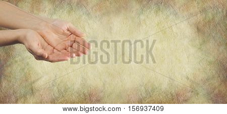 Seeking your help and compassion - female hands held in cupped position gesturing a need for help on a wide rough parchment effect buff colored background with plenty of copy space