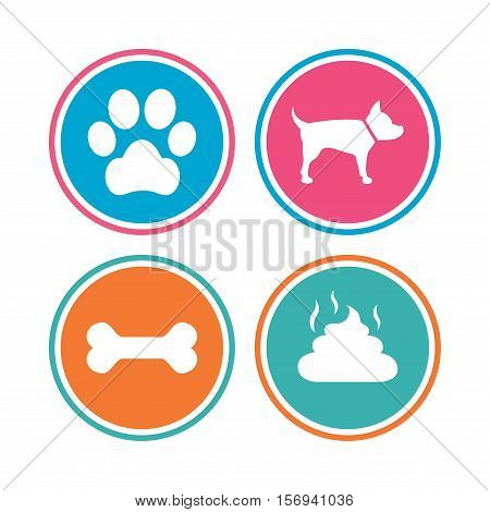 Pets icons. Dog paw and feces signs. Clean up after pets. Pets food. Colored circle buttons. Vector