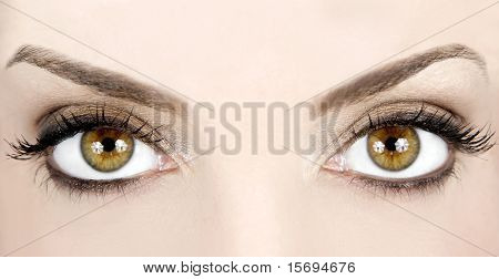 Close-up image of a woman's beautiful eyes