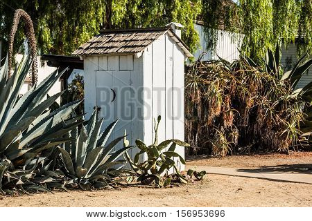 White outhouse surrounded by cactus plants in a garden.