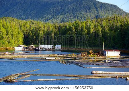 Floating homes and a tug boat in a log booming ground in Kliktsoatli Harbour Denny Island BC near Shearwater with forest covered mountain in background. poster