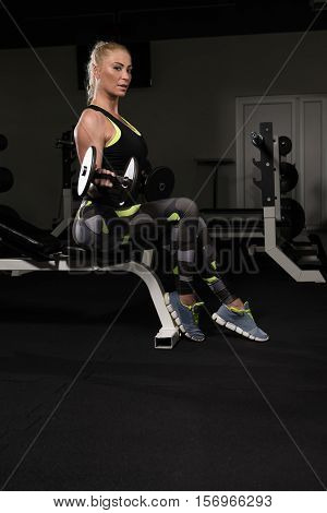 Woman Doing Biceps Exercise With Dumbbells