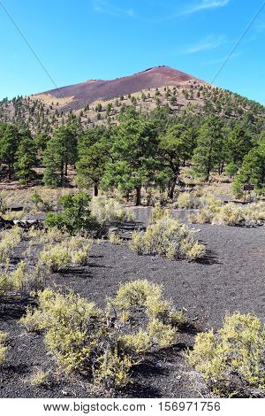 Slope of the cinder cone at Sunset Crater Volcano National Monument north of Flagstaff Arizona vertical