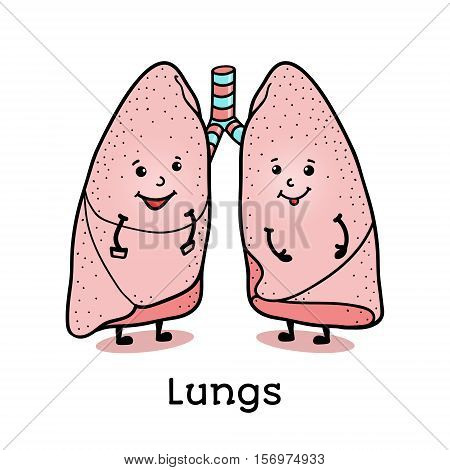 Cute and funny human lung characters, cartoon vector illustration isolated on white background. Healthy smiling lung characters with arms and legs
