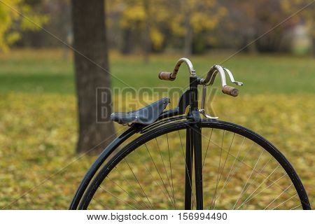 Detail of a penny-farthing bicycle in a park with fallen autumn leaves