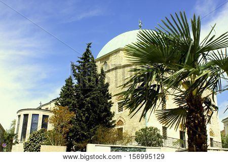 Former mosque, now again is church and museum with palm tree in Pecs, Hungary.