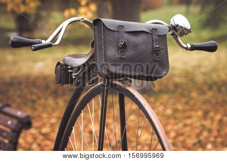 A penny-farthing bicycle with a leather saddle and tool - bag in a park with fallen autumn leaves (soft vintage filter applied)