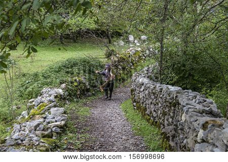 Theth, Albania-21 September, 2016 : Old man Preparing for the winter