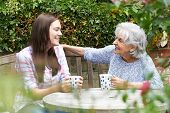 Teenage Granddaughter Relaxing With Grandmother In Garden poster