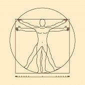 Leonardo da vinci vitruvian man vector. Illustration of vitruvian body man, classic proportion vitruvian man poster