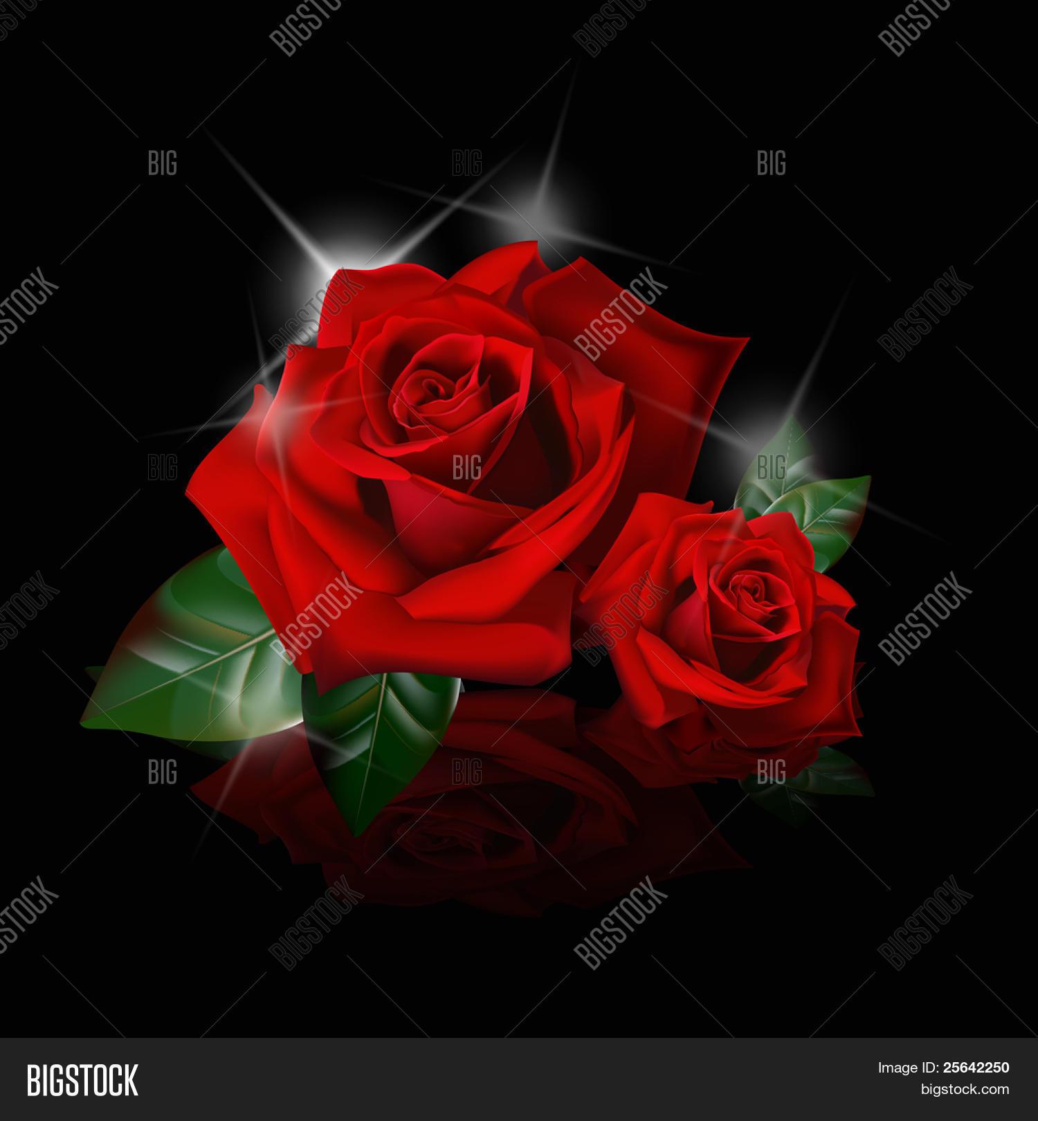 Rose rosse con sfondo nero