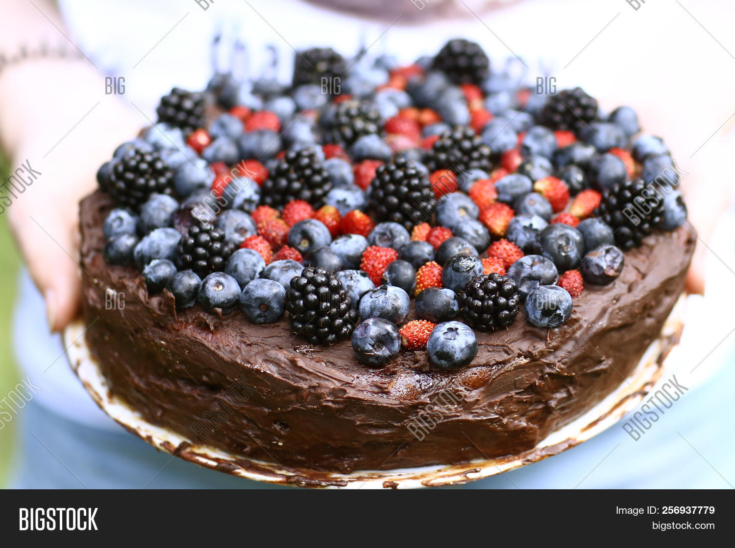 Magnificent Birthday Cake 17 Year Image Photo Free Trial Bigstock Birthday Cards Printable Inklcafe Filternl
